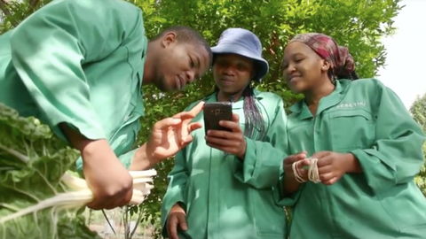 Award-winning farming app boosts South Africa's small-scale farmers