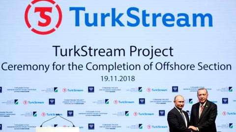 TurkStream fully operational by the end of this year - Putin