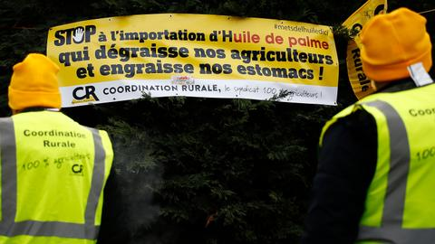 French farmers to protest as Macron battles 'yellow vest' movement