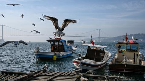 Data shows foreign trade gap shrinks, tourism grows in Turkey