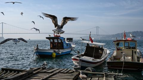 Istanbul and its significance for Turkey's local elections