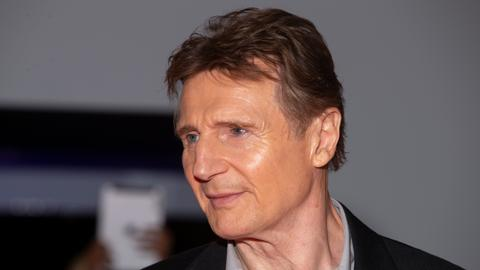 Fellow actors defend Liam Neeson over controversial comments