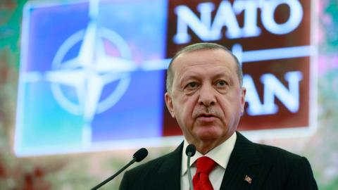 Turkey expects NATO allies to support in combating terror groups – Erdogan
