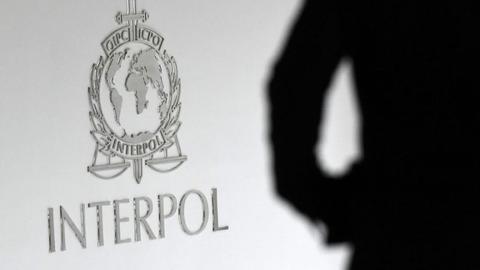 50 children saved after police bust paedophile website - Interpol