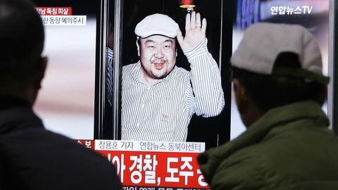 North Korean leader's slain half-brother was CIA informant - report