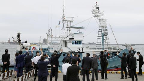 Japan resumes commercial whaling after more than 30 years