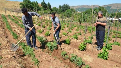 Villagers in southern Turkey return home 26 years after PKK ordeal