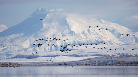 Alaska records warmest month on record