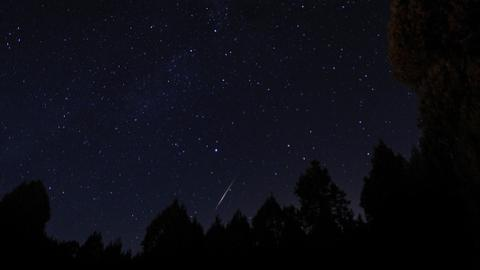 Perseid meteor shower lights up sky in Turkey's Kutahya