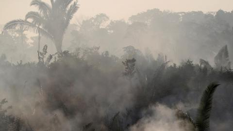 In Pictures: The Amazon burns