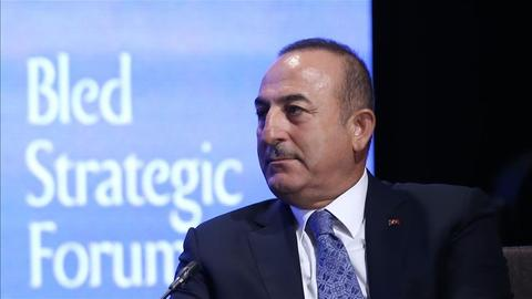 Root causes of migration have to be tackled - Turkish FM Cavusoglu