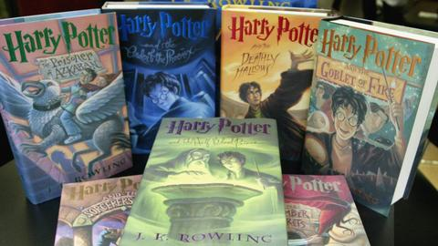 Harry Potter removed from US Catholic school library