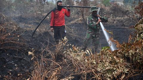 Surging Indonesia forest fires further stoke global warming fears