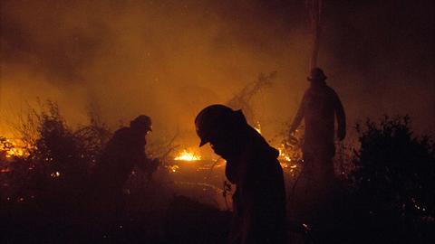 Bolivia fires burn more than 4 million hectares – NGO