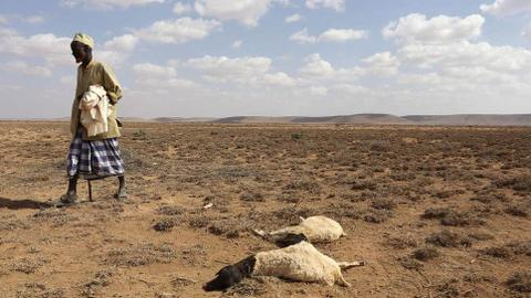 UN warns of mounting humanitarian crisis in Africa's Sahel