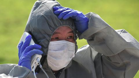 Fears grow in South Korea as tests confirm more swine fever