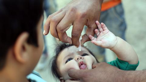 Disease fighters to mark partial victory in polio eradication battle