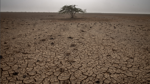 The parched lands of Gujarat bring climate change into stark view in India