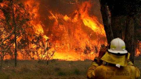 Australian firefighters die as flames circle Sydney; PM cuts short holiday