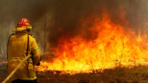 Australia orders evacuations as firefighters struggle to contain wildfires