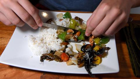 Cambodia 'bug cafe' serves up insect tapas