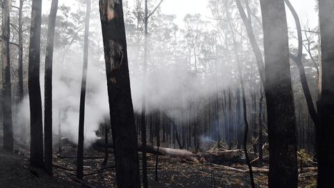 Australia readies as renewed bush fire threat looms, economic costs soar