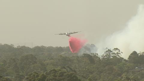 Three dead as Canadian waterbomber crashes fighting Australian bushfires