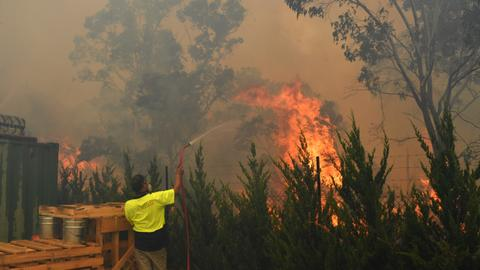 Australia bushfires contributing to big rise in global CO2 levels - UK Met