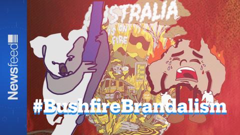 Bushfire Brandalism : A guerrilla campaign