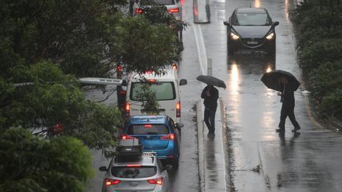 Heavy rain douses Australia's east coast bushfires
