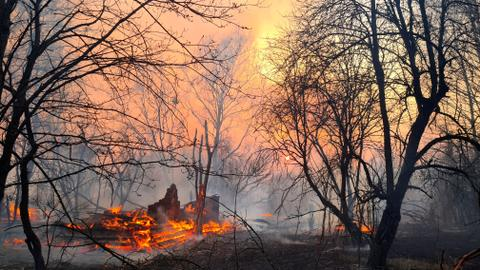 Ukraine fights fires in Chernobyl zone, says no radiation jump