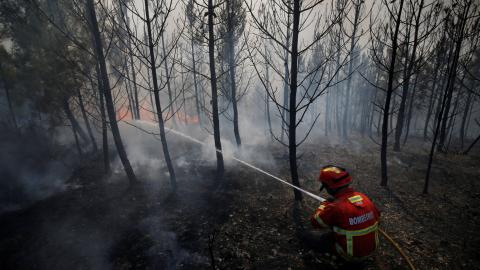 Portugal's deadliest fire still rages after 62 people killed