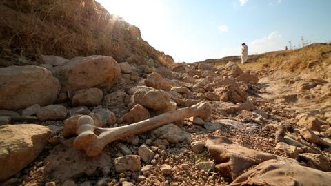 New mass grave unearthed in Iraq's north from brutal Daesh rule