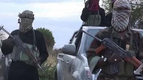 Boko Haram insurgents kidnap 37 women, kill 9 in Niger