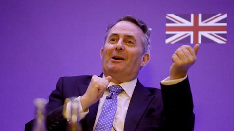 Who is Liam Fox, the UK's nominee for head of the WTO?