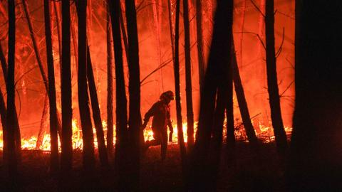 Why fires in the US have become bigger and badder