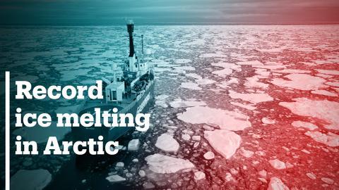 Record ice melting in the Arctic region threatens wildlife