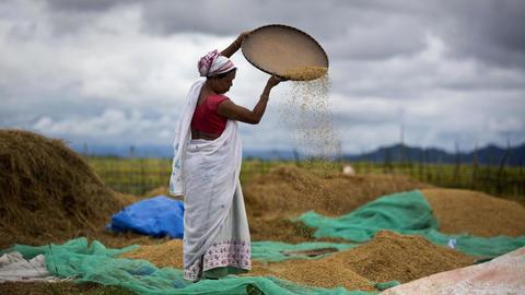 India passes controversial agriculture bills amid uproar
