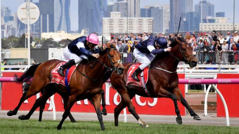 Melbourne Cup to go ahead without spectators