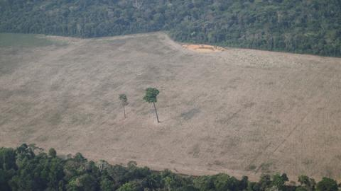 Brazil's Bolsonaro decries 'demagogic' attacks over Amazon deforestation