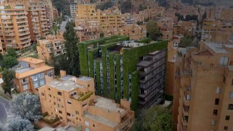 Vertical gardens in Bogota can lead to greener future