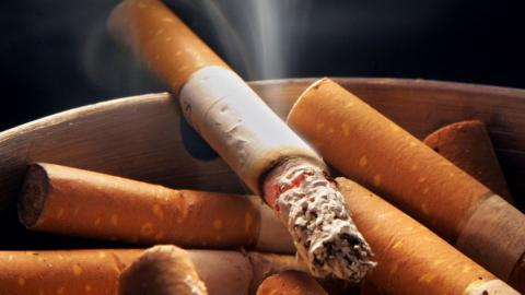 Study finds how smoking causes devastating genetic damage