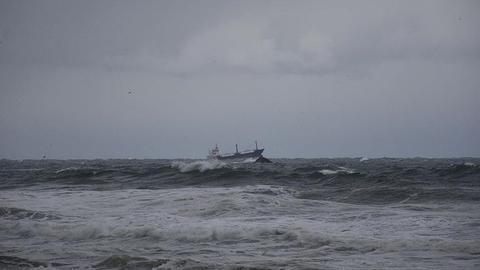 Palau-flagged cargo ship sinks off Turkey's Black Sea coast