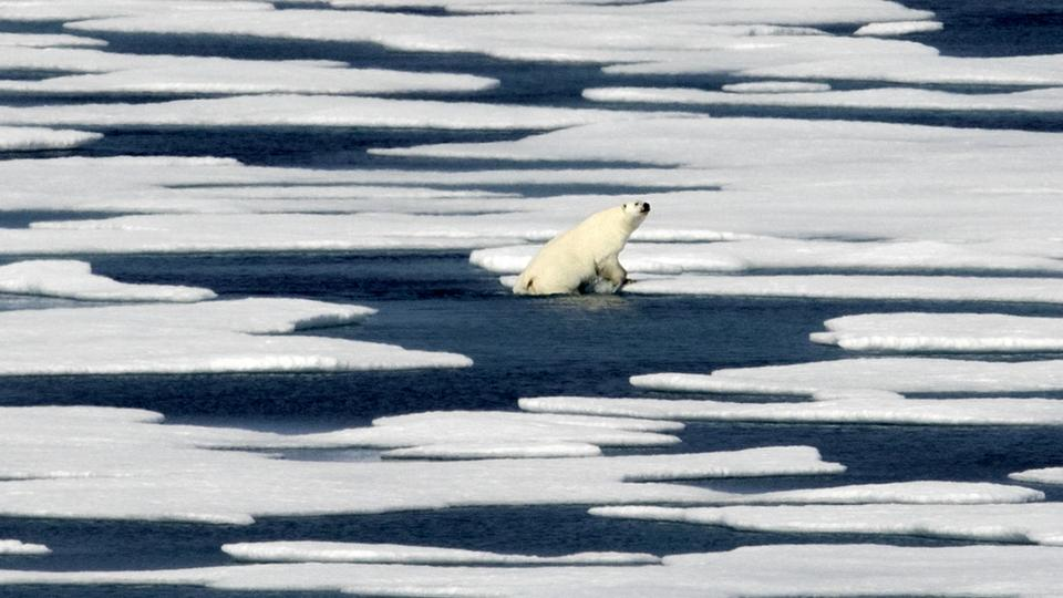 Image result for uaf permafrost canada melting