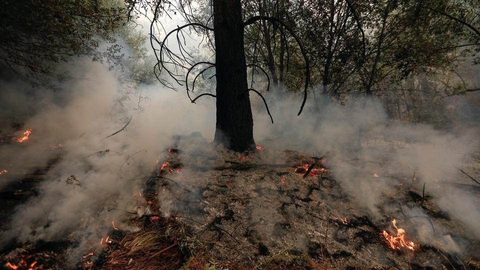 Underbrush burns on the south edge of the Carr Fire near Igo, California, US, July 29, 2018.
