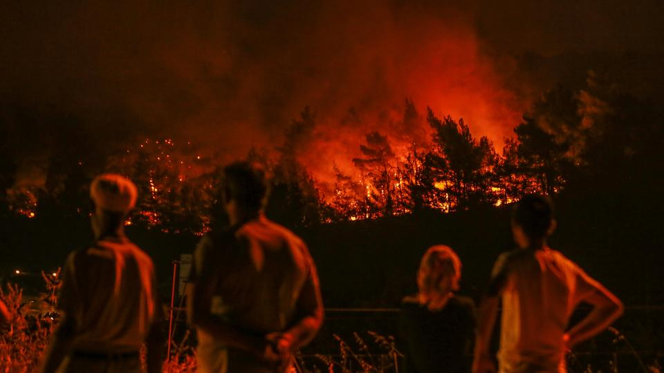 Turkey forest fire destroys land equivalent to 900 football fields