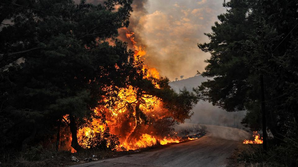 Forest fires burn swathes of land in Syria, Lebanon
