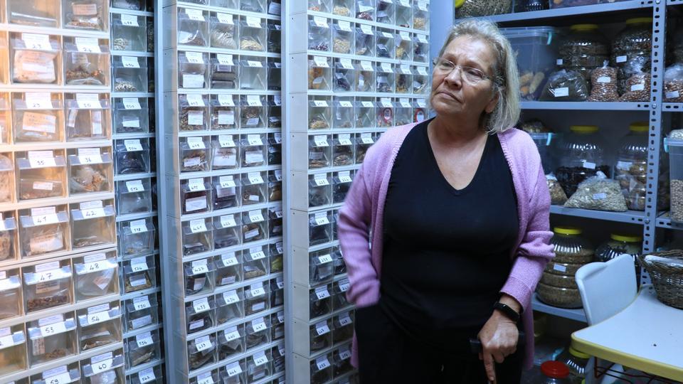 Turkey's school teacher-turned-eco-warrior collects 1200 heirloom seeds