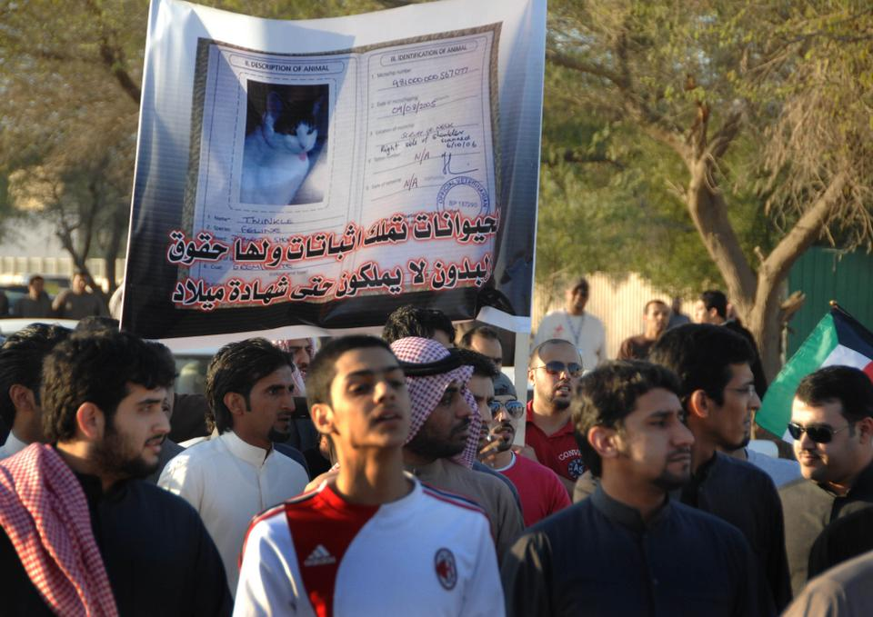 Hundreds of Bidoons demonstrate for their rights in Sulaibiya, 40 km North of Kuwait City, on February 19,  2011. The banner in Arabic reads: