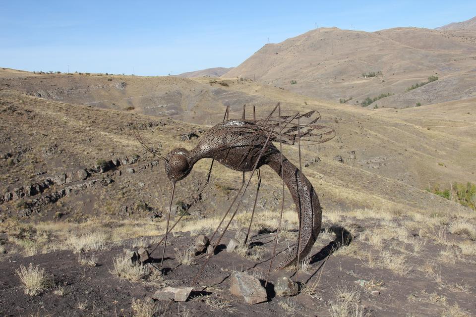 Ibrahim Koc, Mosquito.